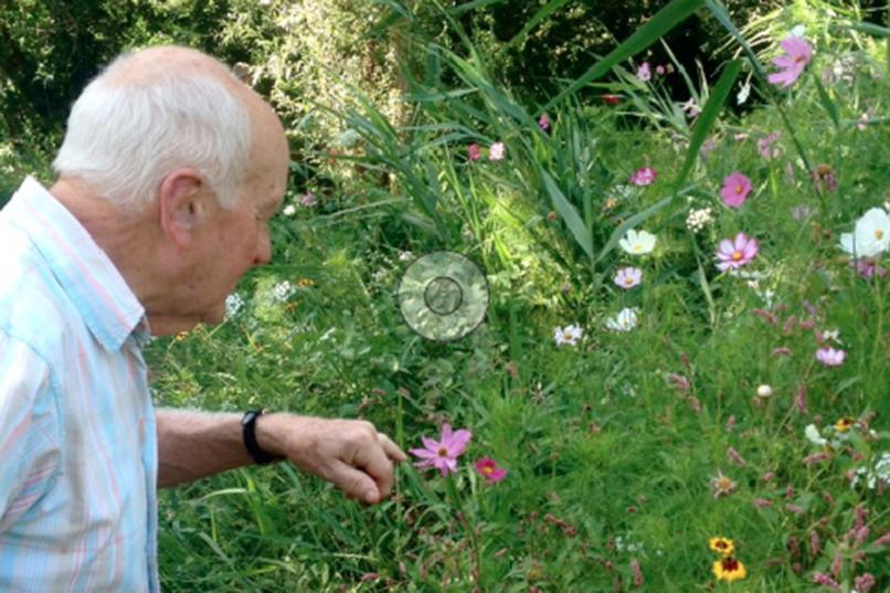 Photo fleurs - Personne âgée